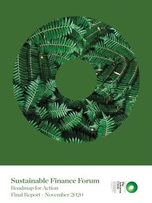 Cover Neuseeland Sustainable Finance Roadmap